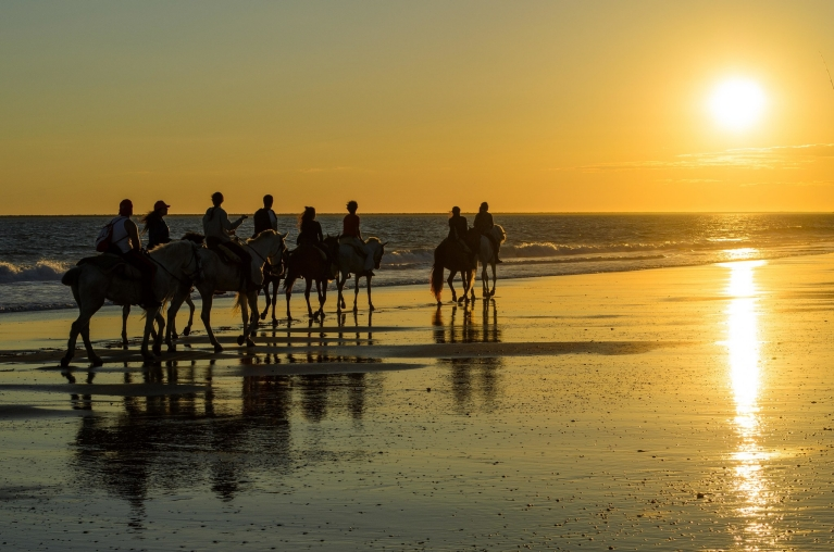 horse_riding_sunset_reflection_on_the_beach_of_mazagon_huelva_andalusia_atlantic_coast_spain