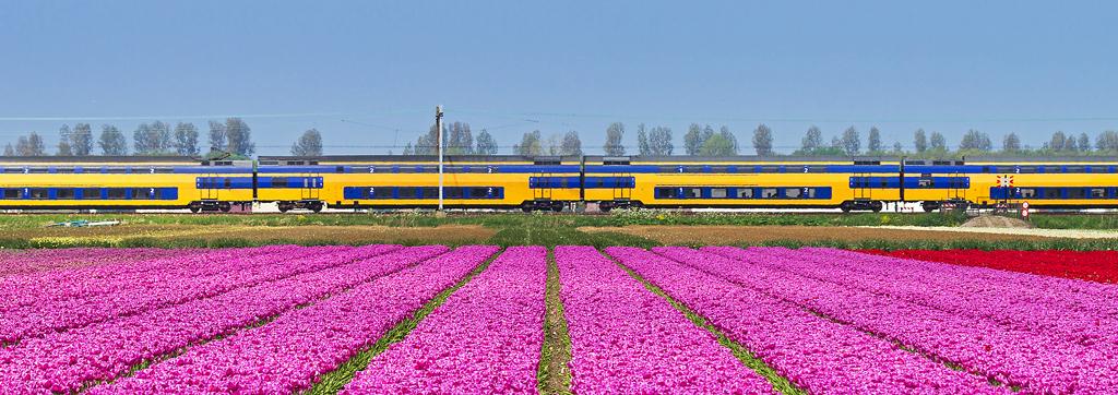 Trains in the Netherlands | Interrail eu