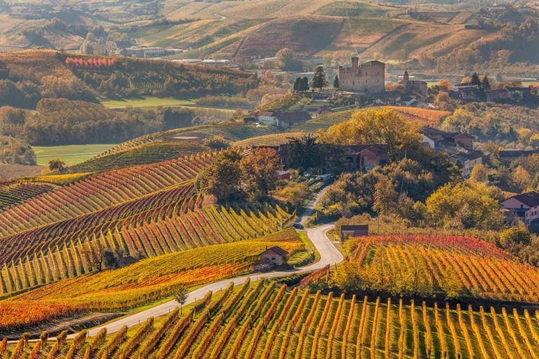 Enjoy the delightful views of the idyllic vineyards of Piedmont