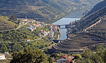 portugal-douro-valley-wine-region